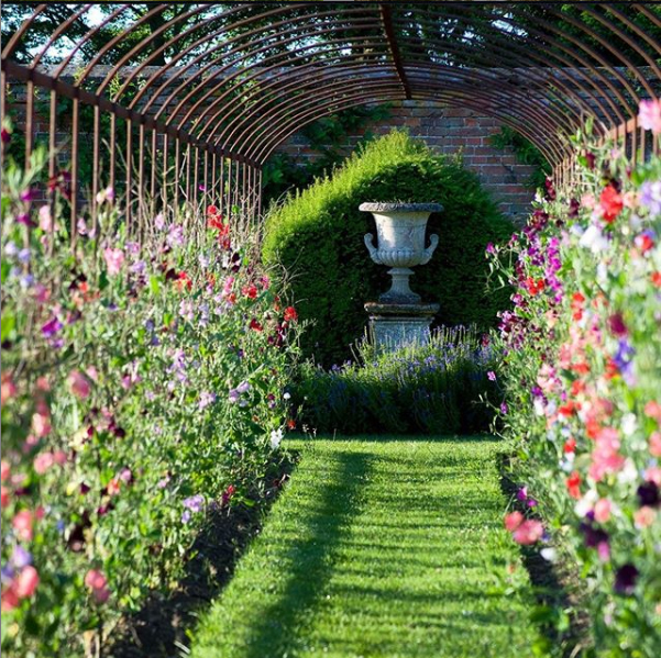 amazing garden tunnel walkway