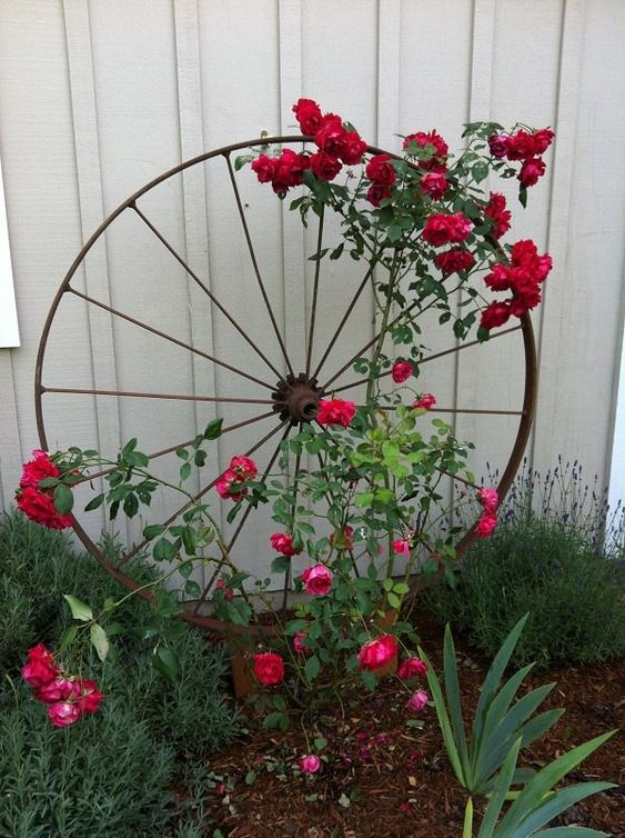 rustic wagon wheel garden trellis for climbing flowers