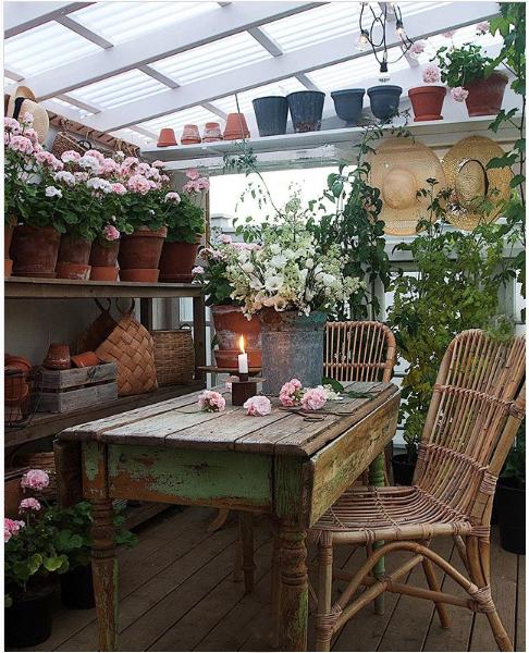amazing backyard greenhouse
