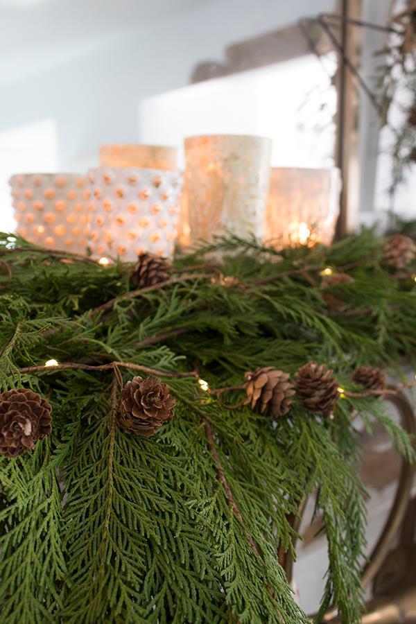 fresh garland for Christmas cedar