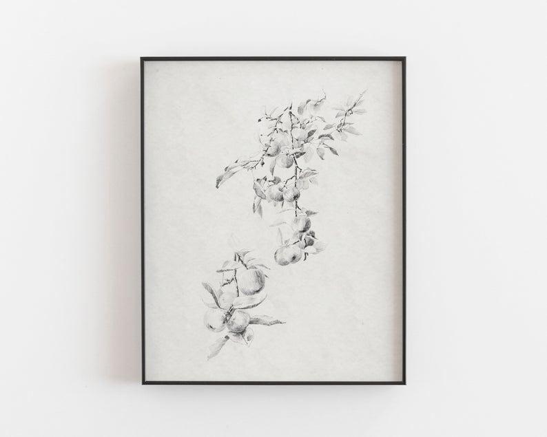 botanical wall prints