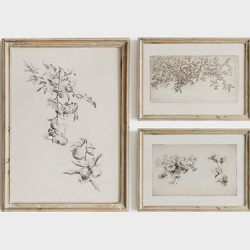 feature image botanical sketch art wall prints set