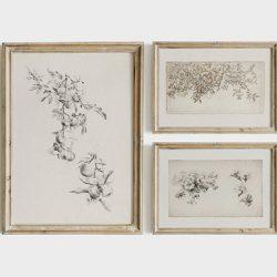 feature image botanical sketch art wall prints set