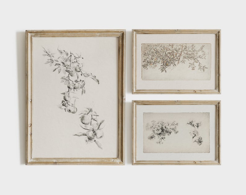 set of three printable botanical prints framed