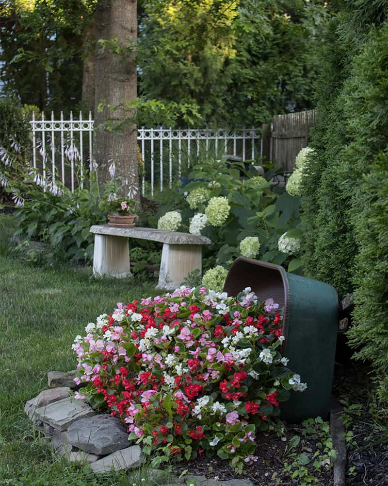 backyard garden ideas curved landscaping