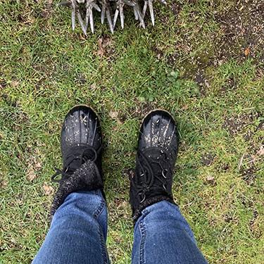 FI-Begginer's-guide-to-lawn-care