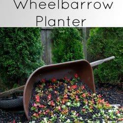 diy wheelbarrow garden planter