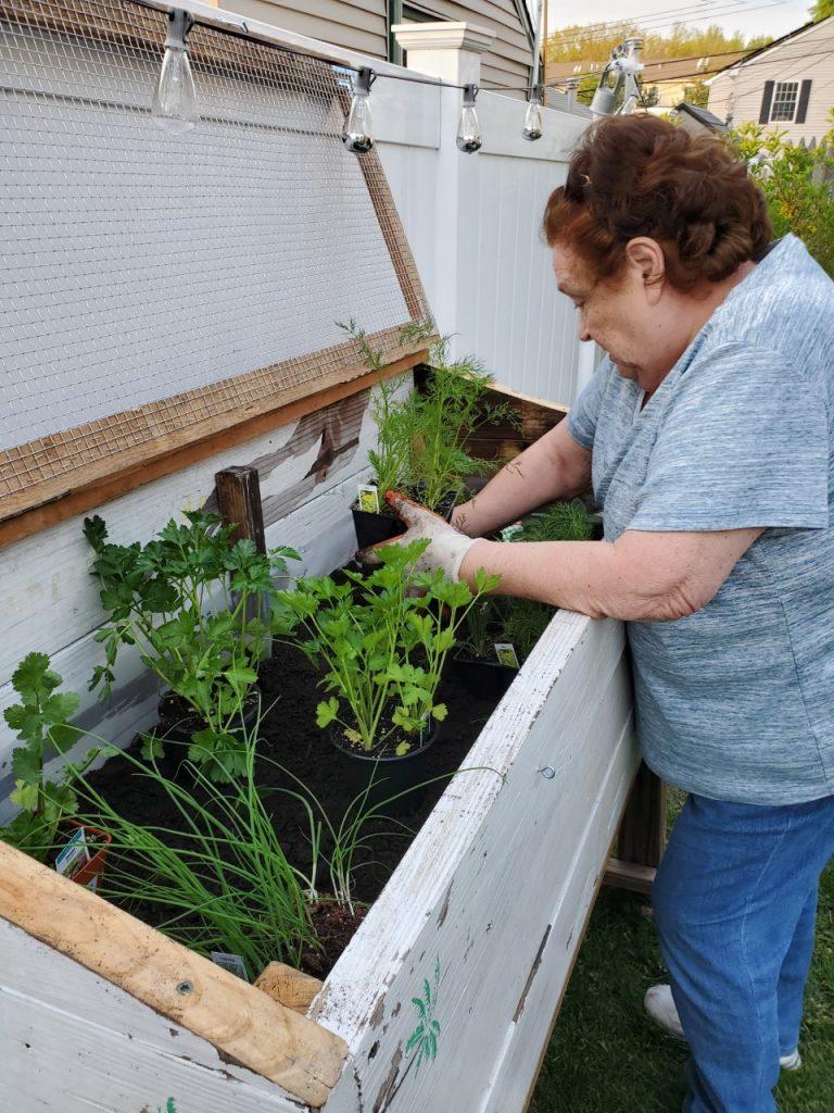 building a planter box for herb garden